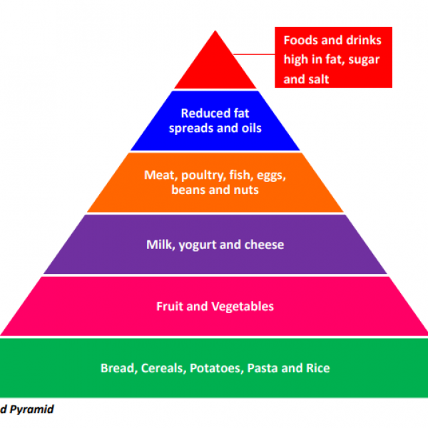 Basic Food Pyramid