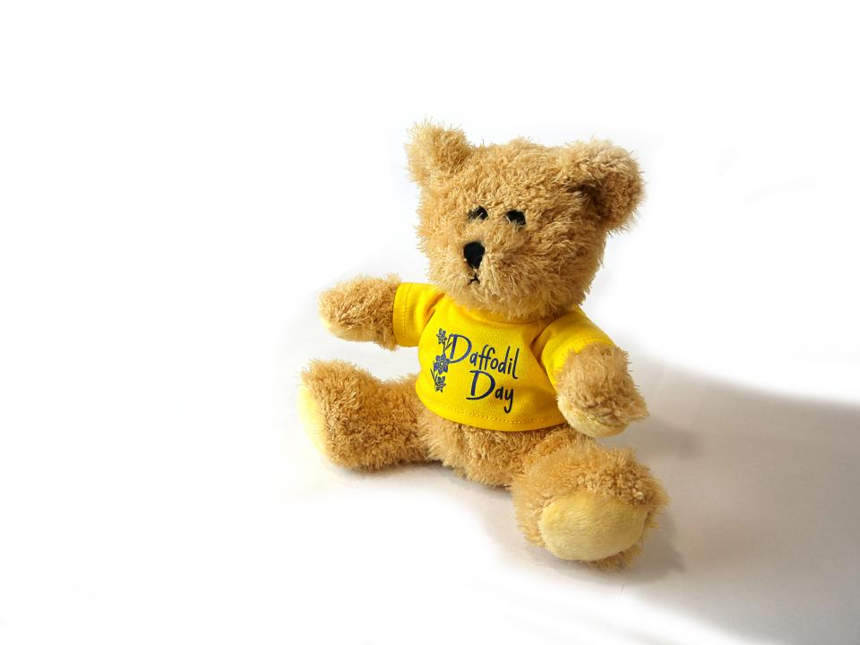 daffodil day teddy bear