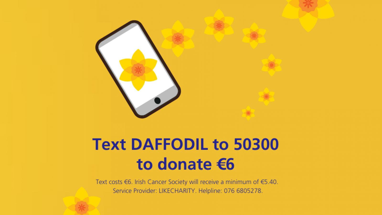 Daffodil Day   Irish Cancer Society